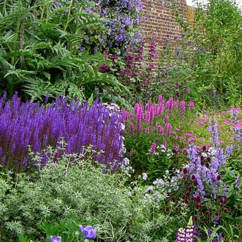 Beautiful border planting in cottage garden style in Teddington
