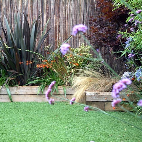 Raised beds with reed screening and beautiful planting in Surbiton