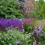 Border planting scheme in Richmond-upon-Thames